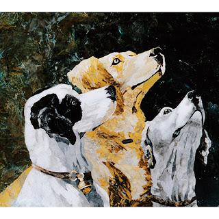 mosaico cani