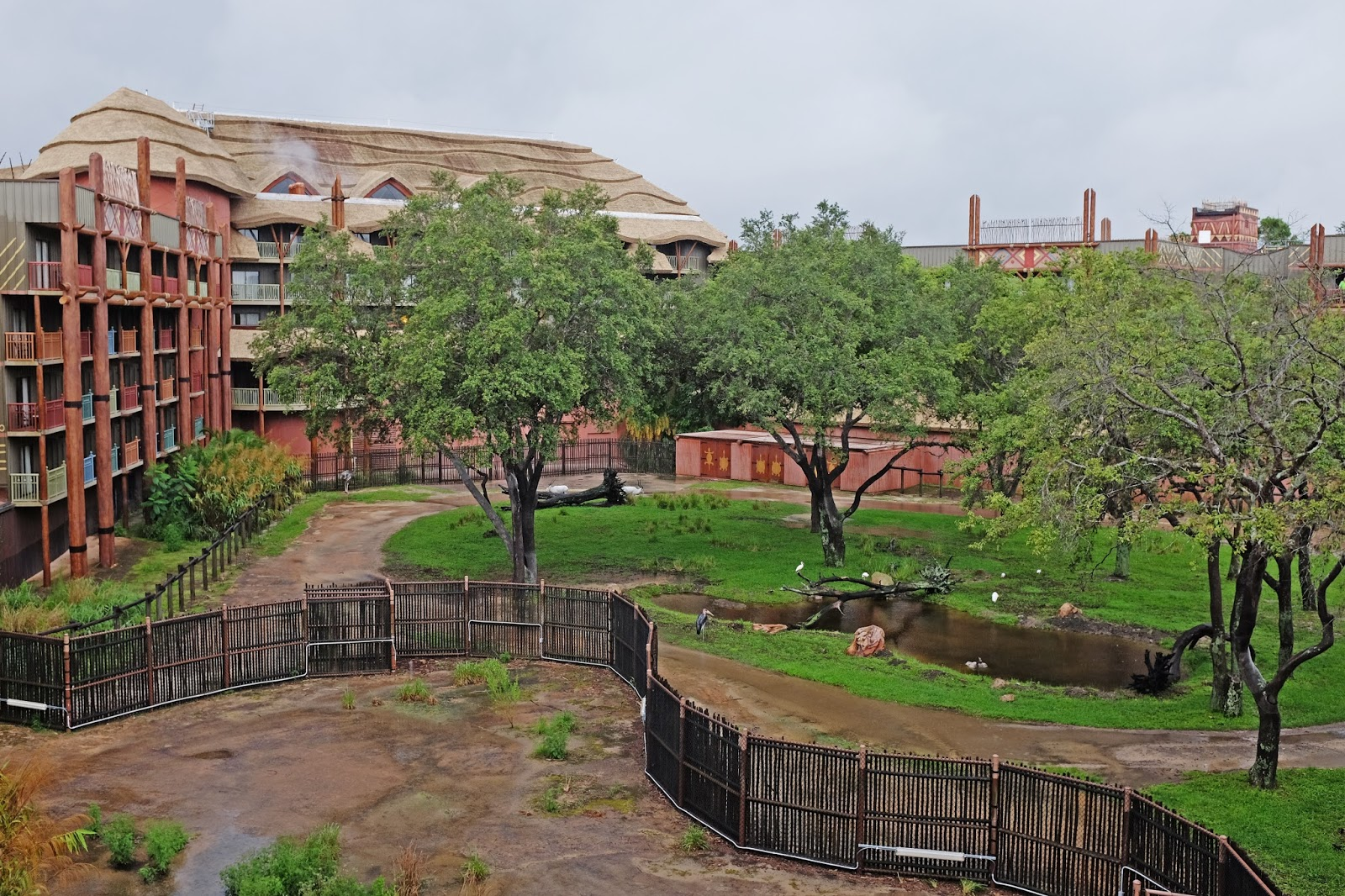 Balcony view at Disney's Animal Kingdom Lodge