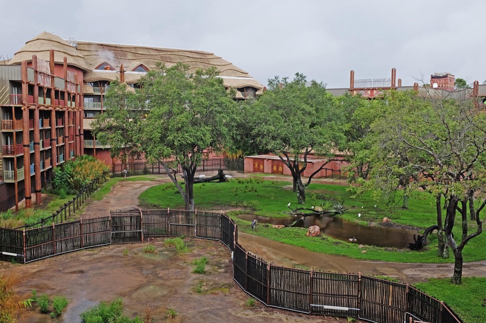 Balcony view at Disney's Animal Kingdom Lodge