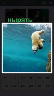 655 слов белый медведь ныряет в глубину с берега 8 уровень
