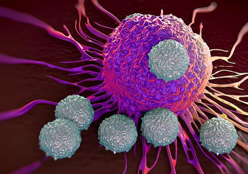 Prova científica: Você pode prevenir o câncer com vitamina C