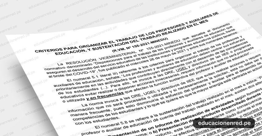 ANÁLISIS: Criterios para Organizar el Trabajo de los Profesores y Auxiliares de Educación, y Sustentación del Trabajo Realizado en el Mes (Fernando Gamarra Morales)