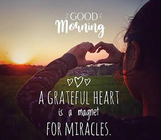 Lovely Good Morning MSG