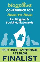 2017 BlogPaws Nose-to-Nose - BEST UNCONVENTIONAL PET BLOG FINALIST