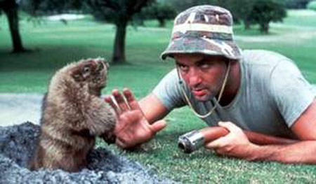 Caddyshack movieloversreviews.filminspector.com Bill Murray