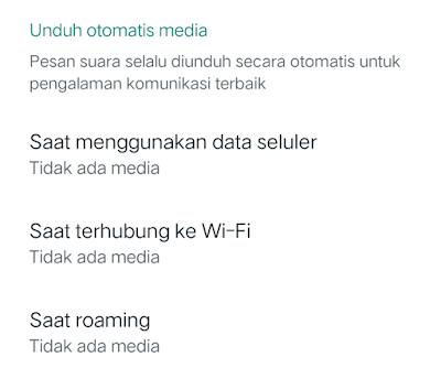 Cara Mudah Mematikan Fitur Download Otomatis di Whatsapp iPhone dan Android