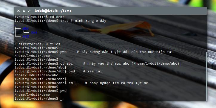 Linux - Đường dẫn tuyệt đối và đường dẫn tương đối