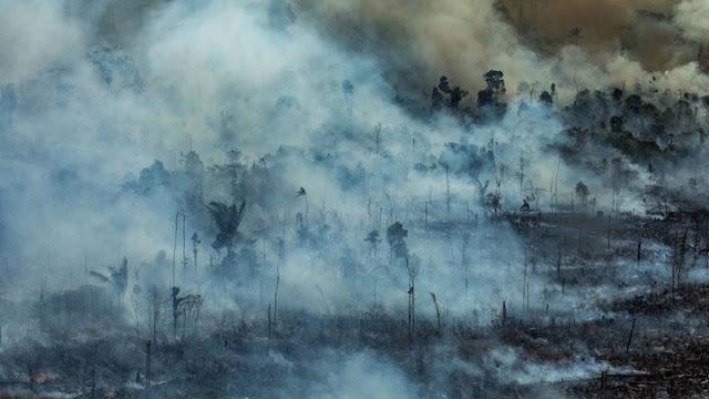 Αμαζονία: Εκατοντάδες νέες φωτιές -  Μεγαλώνει η αγωνία (βίντεο)