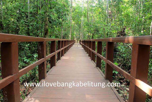 Madu pahit pelawan Bangka Belitung