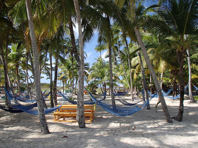 Blue Lagoon hammocks