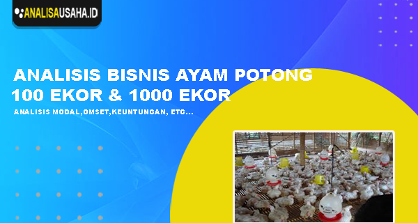 Analisa Usaha Ternak Ayam Potong 100 Ekor Dan 1000 Ekor