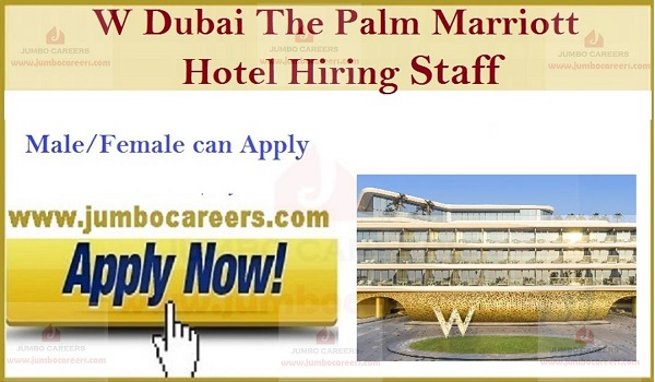 Available Job vacancies in Gulf countries, Current Hotel Jobs in UAE,