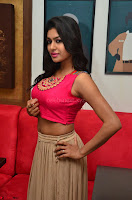 Akshita super cute Pink Choli at south indian thalis and filmy breakfast in Filmy Junction inaguration by Gopichand ~  Exclusive 080.JPG