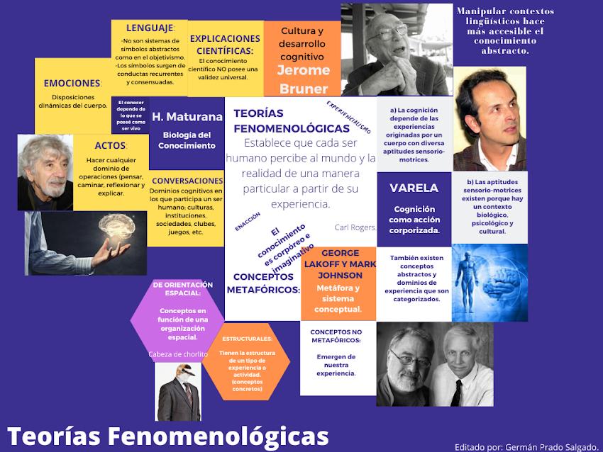 TEORÍAS FENOMENOLÓGICAS