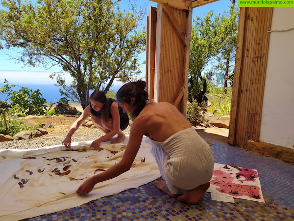 Karmala Cultura Arranca dos proyectos diseñados para la isla con las artistas internacionales Miriam Hartwing y Finnja Willner