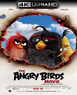 Angry Birds O Filme – Torrent Ultra HD 4K Download (2017) BluRay 2160p Dual Audio