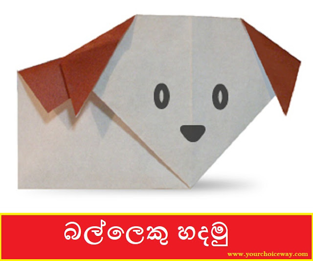 බල්ලෙකු හදමු (Origami A Dog) - Your Choice Way