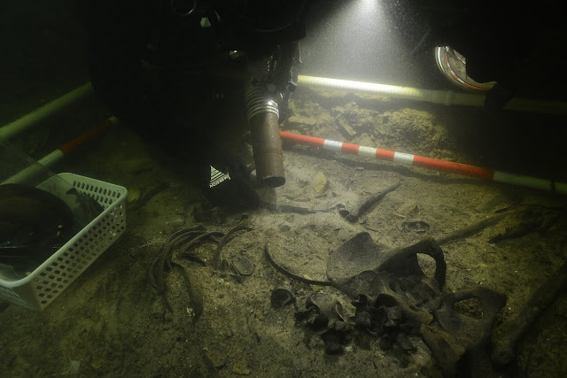 Remains of medieval soldier found in Lithuanian lake