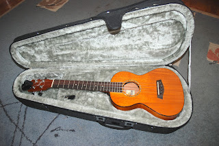 pod ukulele case with Islander MST-4