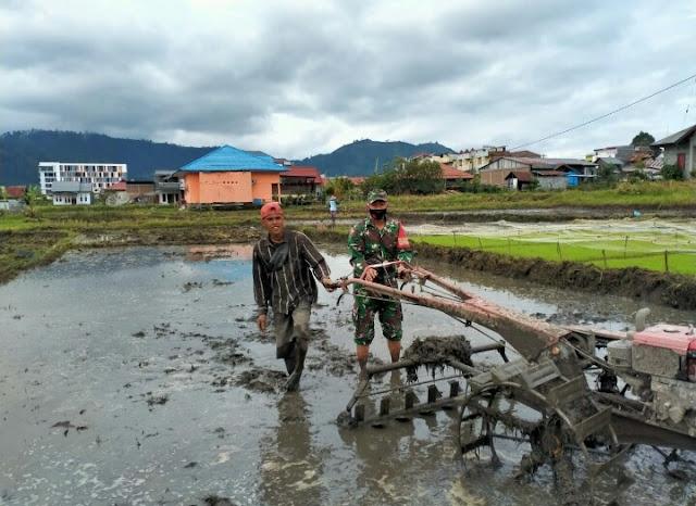 Babinsa Koramil 01/Kota Kodim 0106 Bantu Petani Menyiapkan Lahan Penanaman ladi.