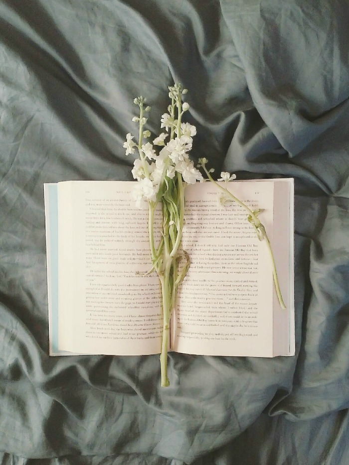books with flowers cozy