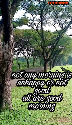 5 great morning non copyrighted pictures for youtubers and site creators