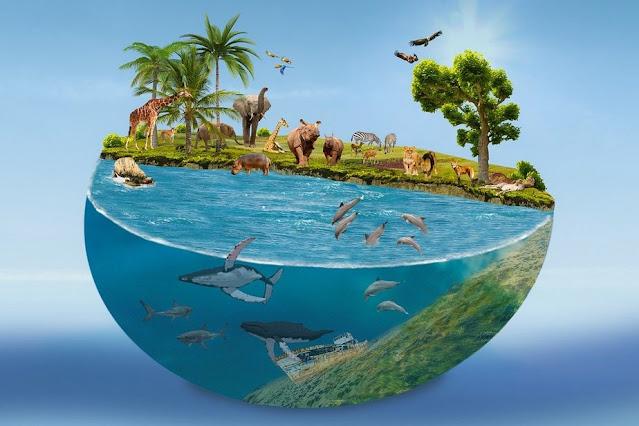 Μήνυμα Πλακιωτάκη για την Παγκόσμια Ημέρα Περιβάλλοντος