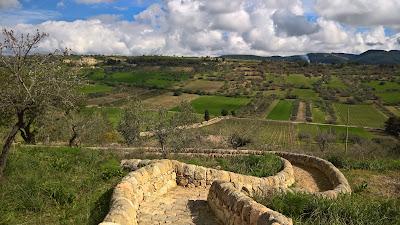 View from Locanda Gulfi winery.
