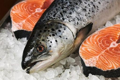 Cá hồi rất tốt cho sức khoẻ