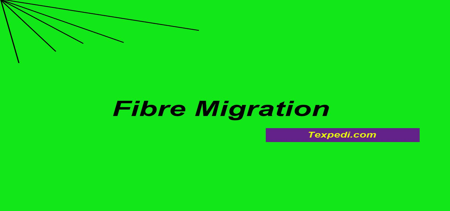Fibre Migration in Yarn structure