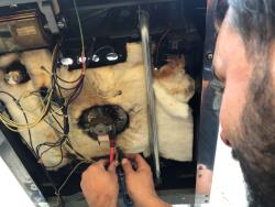 Oven Repairs Surrey