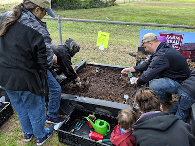 Adults and children plant seeds in garden bed