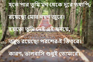 bangla love sms photo