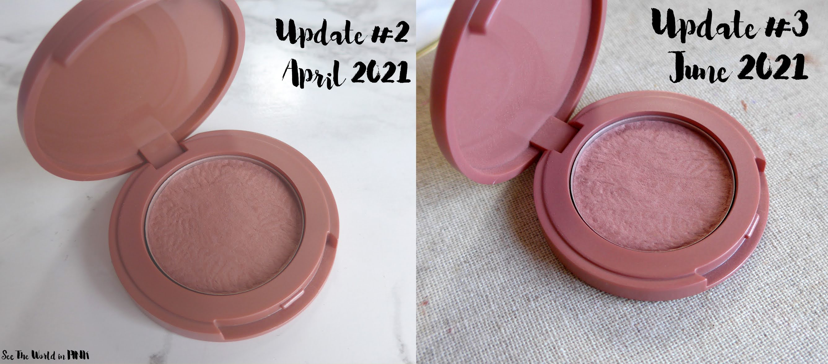 Project Pan 21 in 2021 ~ Update #3