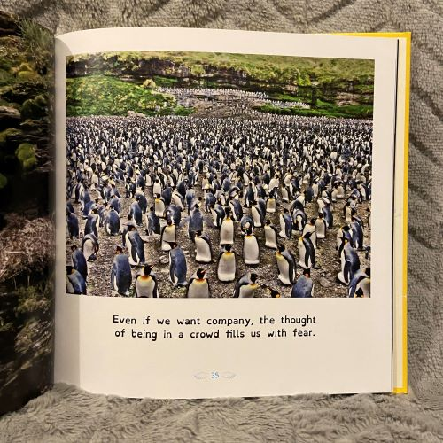 many penguins with text ' even if we want company the thought of being in a crowd fills us with fear'