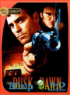 Del Crepusculo Al Amanecer (1996) Latino BDRIP [Google Drive] Onix