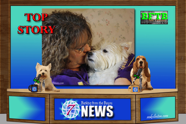 BFTB NETWoof News report on humans' love for dogs