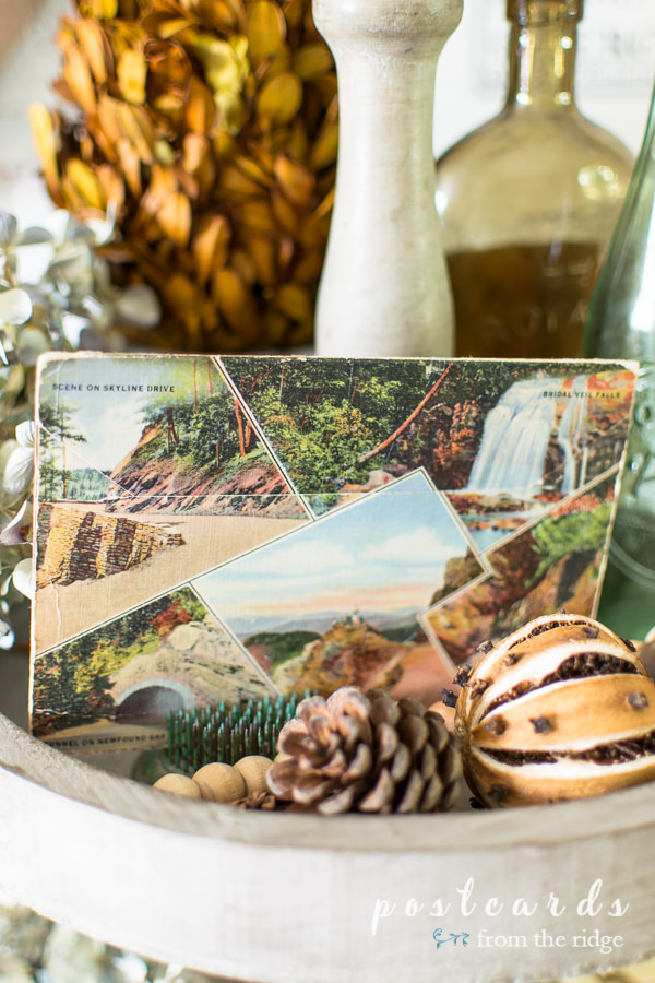 pine cones and vintage smoky mountain postcards