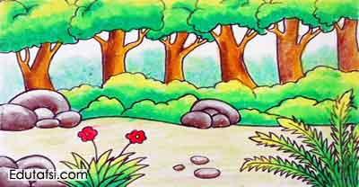 Cara Menggambar Pemandangan Pinggiran Hutan Untuk Pemula