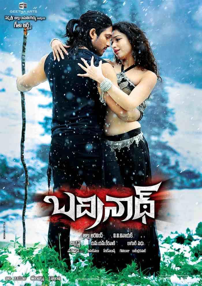 Badrinath Full Movie Download in Hindi 480p 300mb filmywap