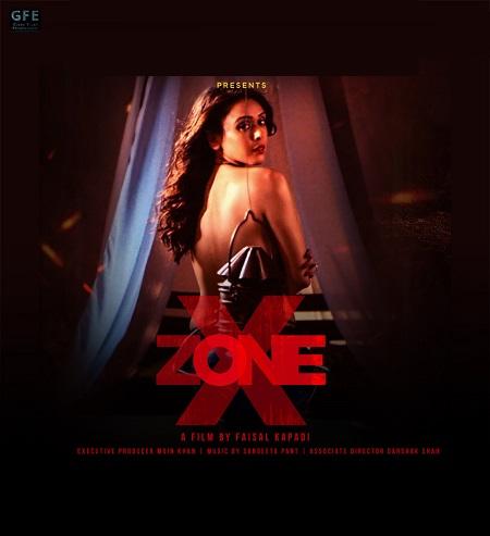 X Zone (2020) Hindi 720p | 480p HDRip x264 AAC DD 2.0 – 900 MB | 300 MB