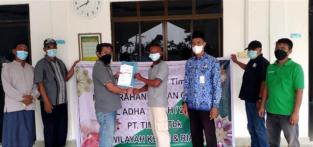 PT Timah Tbk Bagikan 32 Ekor Hewan Kurban di Kepuluan Riau dan Riau