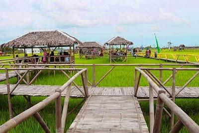 kampung wisata sawah