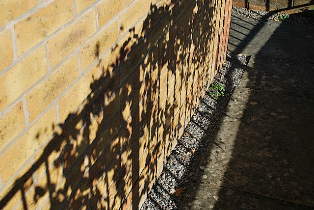shadows on house wall