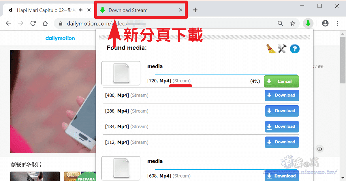 Stream Video Downloader 擴充功能