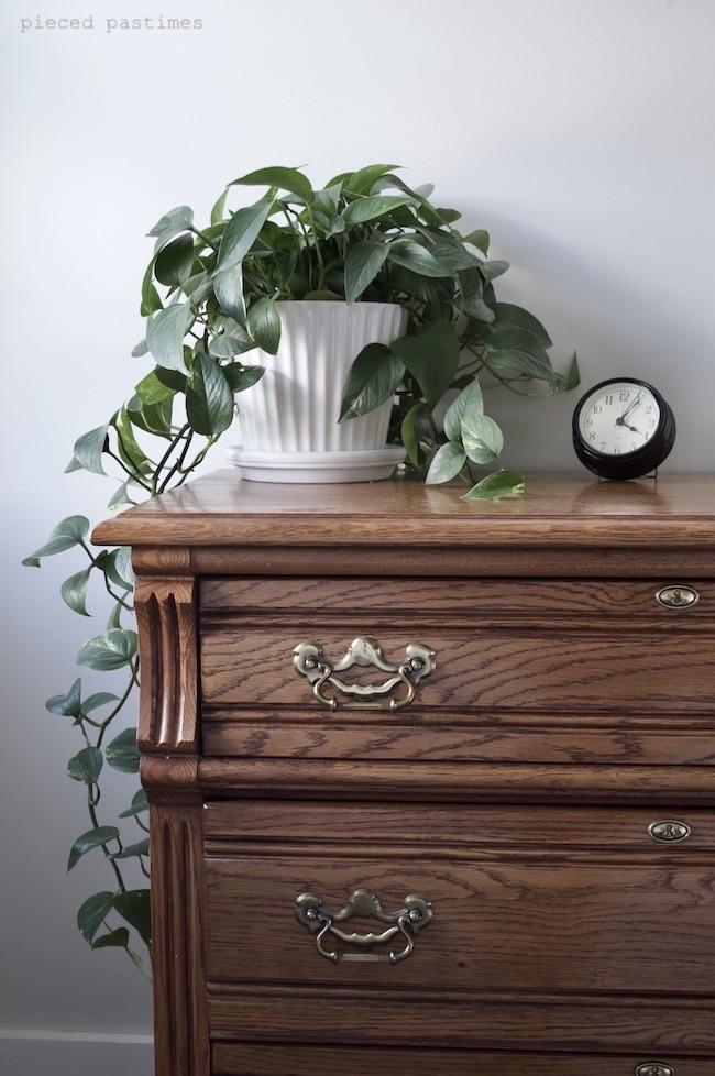 Pieced Pastimes Minimalist Bedroom Plants on the Bureau