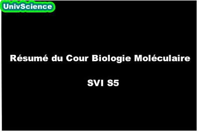 Résumé du Cour Biologie Moléculaire SVI S5