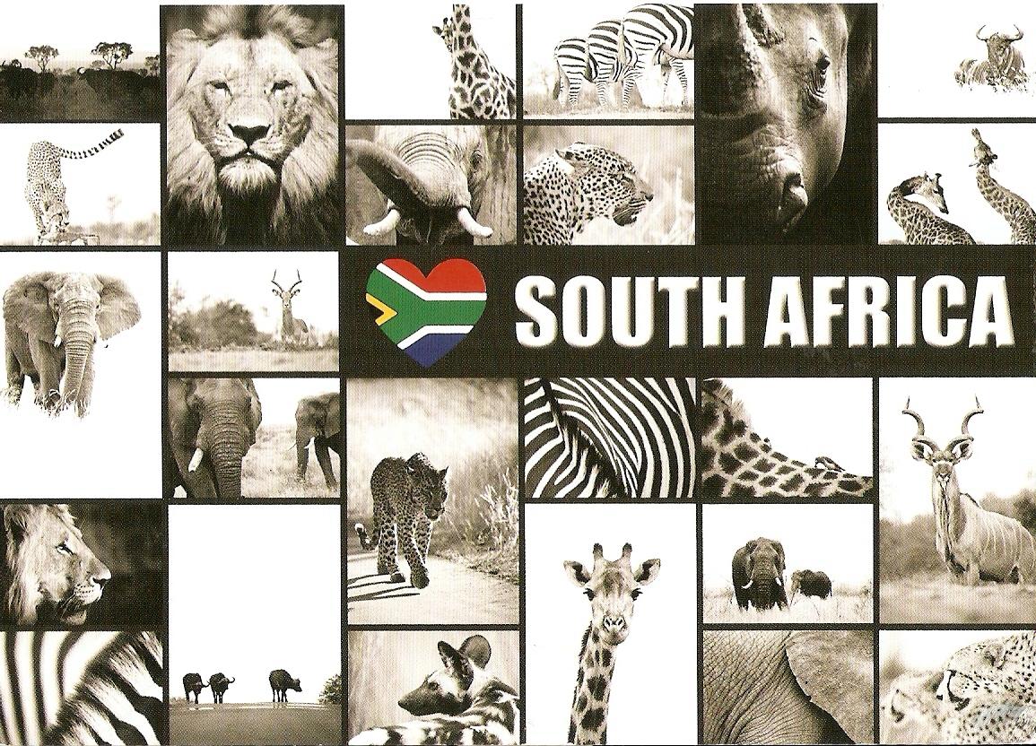 Carte Postale Afrique Du Sud.Le Monde En Cartes Postales Par Estelle Afrique Du Sud