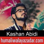 https://www.humaliwalayazadar.com/2019/09/kashan-abidi-noha-2020.html