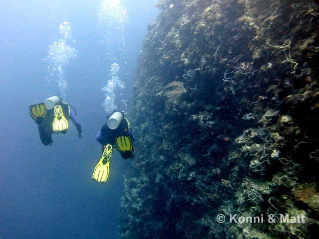 Diver at Tambisan wall, Siquijor island, scuba, yellow fins